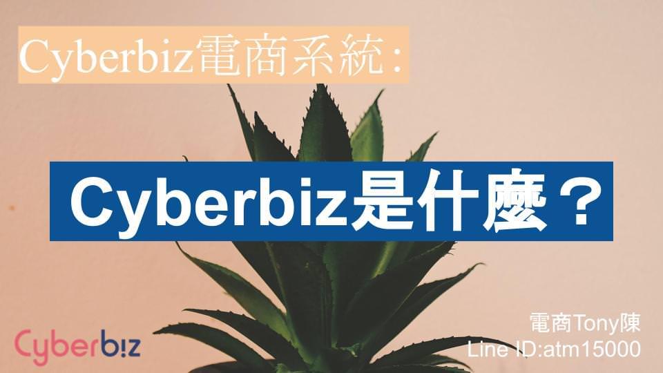 Cyberbiz是什麼