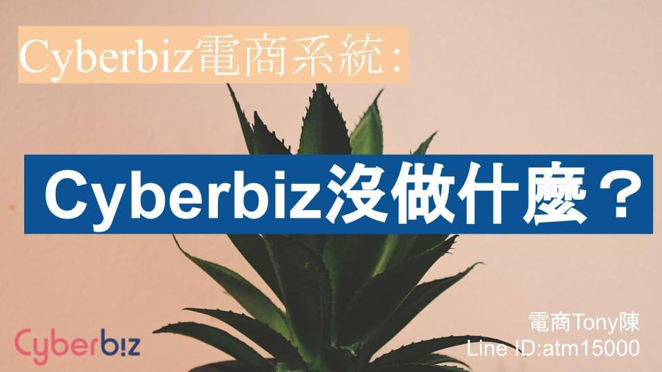 Cyberbiz沒做什麼